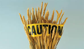 caution-wheat